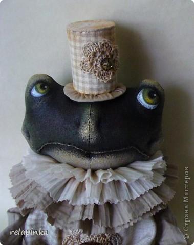 Тоби (робкий жаб) фото 1