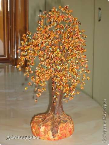 яблонька с золотыми яблоками фото 23