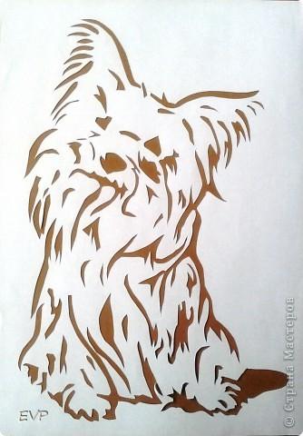 Нашла картинку такой смешной собачки, просто копия нашего домашнего любимца - Кузьмы. Вот, что у меня получилось. фото 2