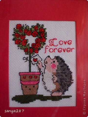 Любовь навсегда! фото 1