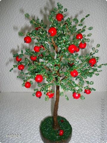 Ветка яблони в цвету своими руками
