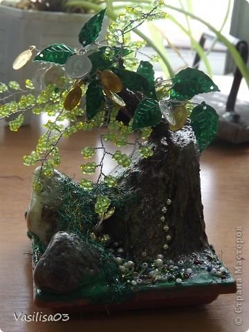 Денежное дерево-пещера