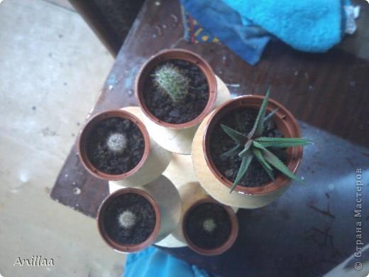 Мини-стоечка под кактусики. фото 2