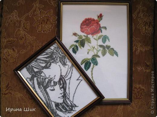 Роза фото 3