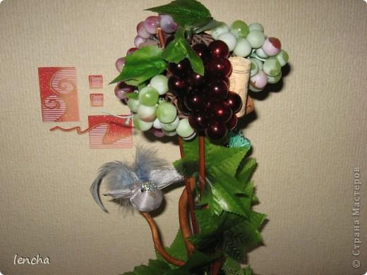 Здравствуйте, мои дорогие жители Страны мастеров!!! Я сегодня к вам со своей новинкой-повторюшкой ;)) Снова виноградный топиарий фото 2