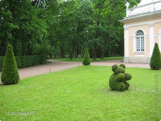 Приглашаю в Петергоф. фото 9
