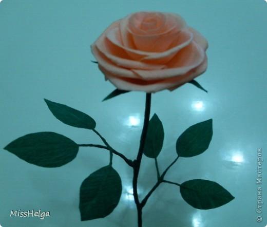 Бумажная Роза и Одуванчики фото 1
