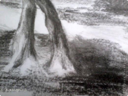 Пейзаж. фото 2