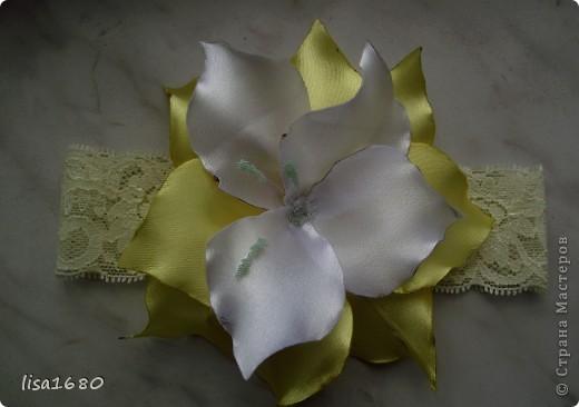 Вот такая получилась белая орхидея крабик фото 6