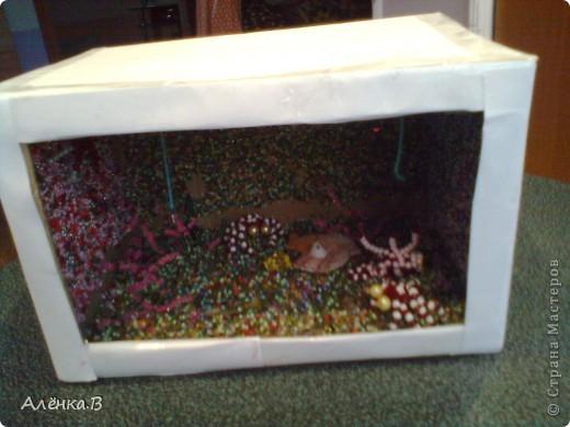 Рыбок делала с помощью этой ссылки: http://stranamasterov.ru/node/84165?c=favorite ,но как там не было МК,я делала сама и подсматривала как она примерно делается по этой ссылке фото 1
