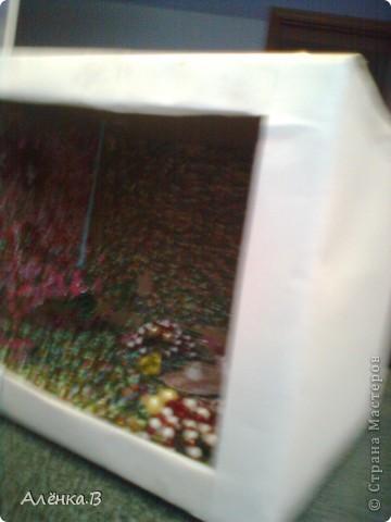 Рыбок делала с помощью этой ссылки: http://stranamasterov.ru/node/84165?c=favorite ,но как там не было МК,я делала сама и подсматривала как она примерно делается по этой ссылке фото 4