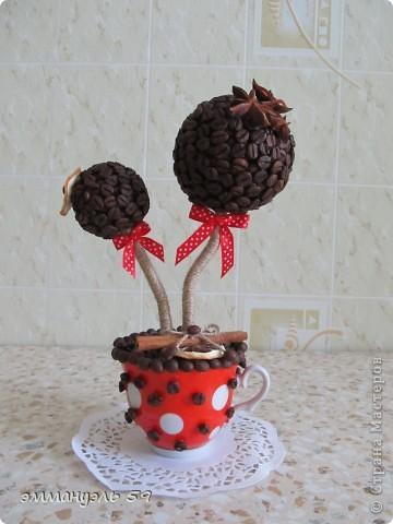 Дорогие мастерицы, представляю вам свой очередной кофейный топиарий. Сделала в подарок подружке на кухню (она у нее в красном цвете), думаю подойдет.)))) фото 1