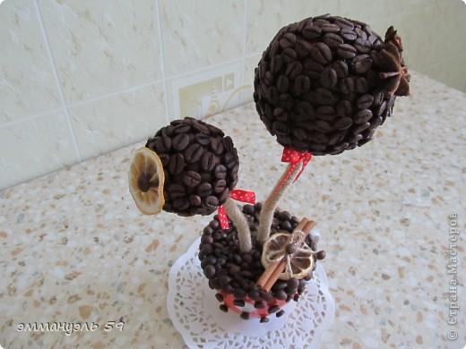 Дорогие мастерицы, представляю вам свой очередной кофейный топиарий. Сделала в подарок подружке на кухню (она у нее в красном цвете), думаю подойдет.)))) фото 3