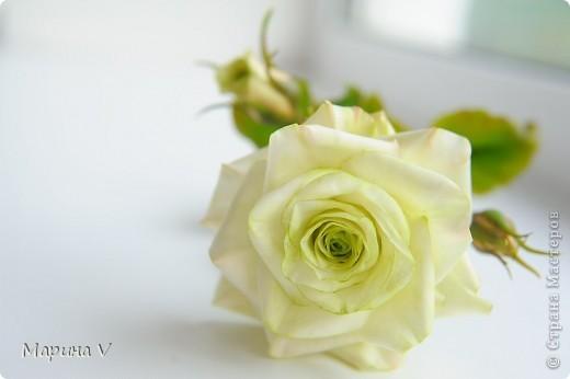 Посчастливилось мне попасть на урок к замечательному мастеру (кстати, ее гениальные розы можно посмотреть и в Стране). Так вот результат того мк я покажу позже, а это уже полностью моя самостоятельная работа))) фото 4