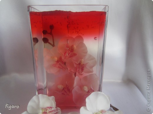 Орхидея мания. фото 2
