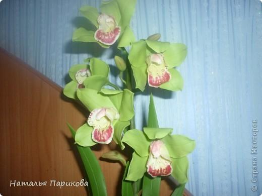 Всем здравствуйте!!! Слепила орхидею, выставляю на ваш суд. фото 2