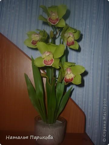 Всем здравствуйте!!! Слепила орхидею, выставляю на ваш суд. фото 1