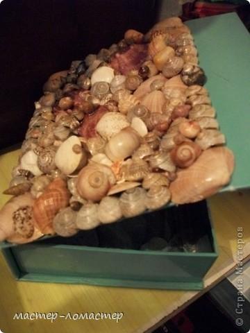 Моя морская шкатулочка!!!! фото 4