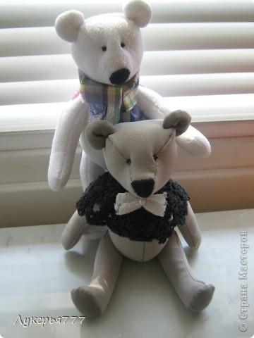 Кролик Сеня) Очень воспитанный и скромный)) фото 2
