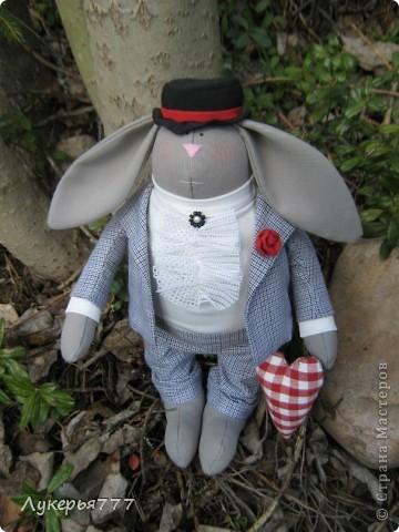Кролик Сеня) Очень воспитанный и скромный)) фото 10