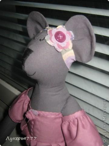 Кролик Сеня) Очень воспитанный и скромный)) фото 11