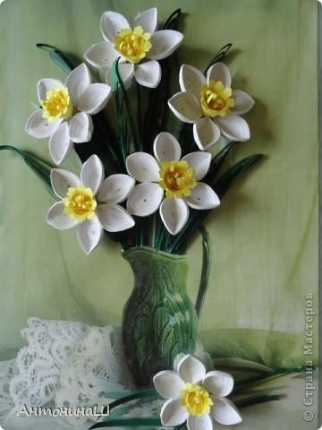 Приветствую всех жителей страны!!! Здравствуйте , дорогие мастера и мастерицы!!!  У меня снова цветы. На этот раз нарциссы, правда немного запоздалые . Приглашаю всех вспомнить весну. буду рада всем, кто заглянет в гости. фото 3