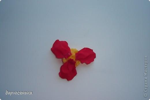 вот такие цветы у меня получились фото 9