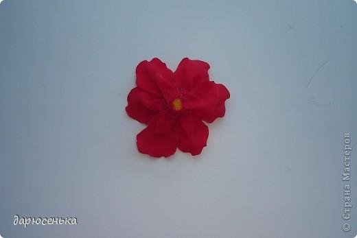 вот такие цветы у меня получились фото 10