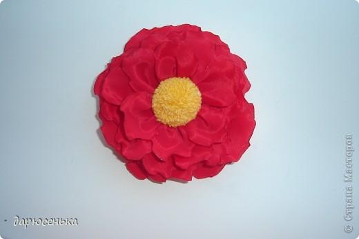 вот такие цветы у меня получились фото 1