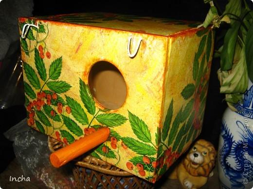 """Был обычный деревянный домик для попугаев.Решила добавить им радости в """"невольной """"жизни. фото 1"""
