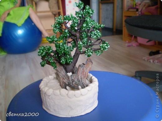 Это дерево мне помогла сделать мама и сестра Марина.