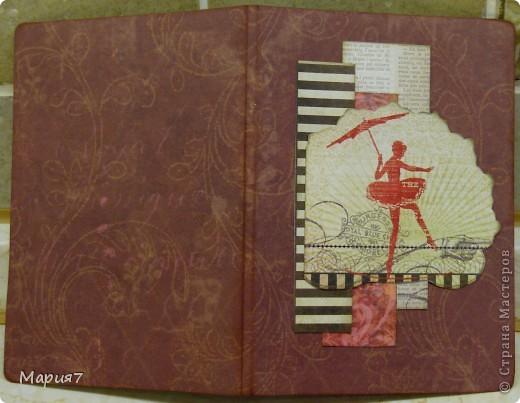 Сделала вот такую обложку на паспорт: фото 2