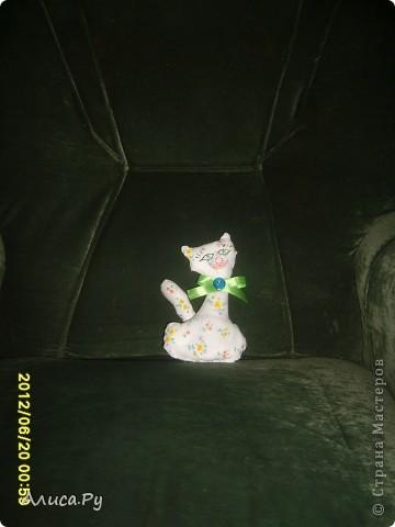 Вчера вечером мы с Ульяной (Просто Ульяна) договорились пошить что-нибудь вместе. Как мы в воскресенье с Анной (ALIBI). Сегодня утром, перебирая выкройки, мы с Улей остановились на выкройке этой кошечки. Вот моё творение-киска Василина.Вася глаМУРная и нежная. Вся в цветочек:)) А вот ссылочка на сестричку Васи - Линду http://stranamasterov.ru/node/389255 фото 1