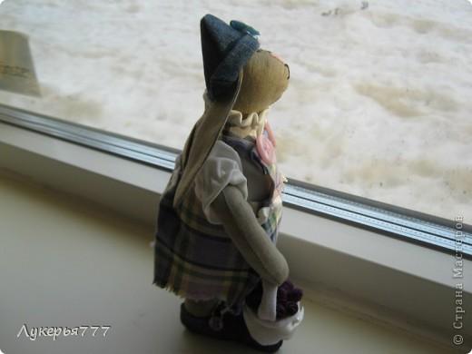 Кролик Сеня) Очень воспитанный и скромный)) фото 5