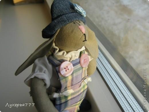 Кролик Сеня) Очень воспитанный и скромный)) фото 4
