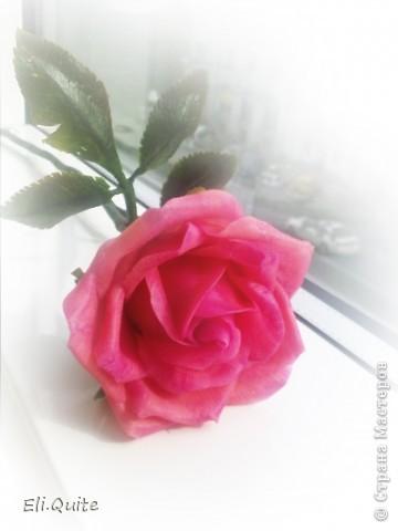 Сегодня я вдруг осознала, что леплю уже наверно 20-ю розу, но ни разу их здесь не показывала! Вот исправляюсь! ;) Представляю на Ваш суд 2 свои последние работы: розу и орхидею. Роза слеплена в подарок для подруги моей бабушки, а орхидея - одному замечательному врачу! фото 1