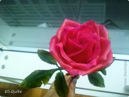 Сегодня я вдруг осознала, что леплю уже наверно 20-ю розу, но ни разу их здесь не показывала! Вот исправляюсь! ;) Представляю на Ваш суд 2 свои последние работы: розу и орхидею. Роза слеплена в подарок для подруги моей бабушки, а орхидея - одному замечательному врачу! фото 5