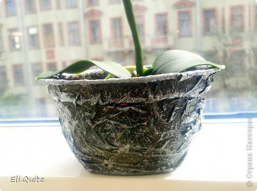 Сегодня я вдруг осознала, что леплю уже наверно 20-ю розу, но ни разу их здесь не показывала! Вот исправляюсь! ;) Представляю на Ваш суд 2 свои последние работы: розу и орхидею. Роза слеплена в подарок для подруги моей бабушки, а орхидея - одному замечательному врачу! фото 11