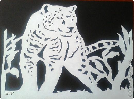 Хотелось сделать, в продолжении африканской темы http://stranamasterov.ru/node/388326 , теперь хищников но нашла только две картинки. поэтому пока не триптих, но всё же покажу.  фото 3