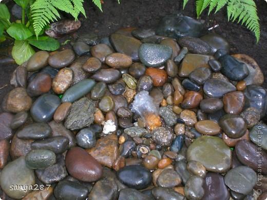 Этим летом нам захотелось, чтобы в саду появился небольшой водоем. Места для реализации идеи было немного, поэтому придумали вместо фонтана и прудика соорудить родничок, похожий на природный. Технология оказалась простой и не затратной, идею подсмотрели в интернете. Материалы: пластмассовый таз, насос для аквариума, различные камни. фото 1