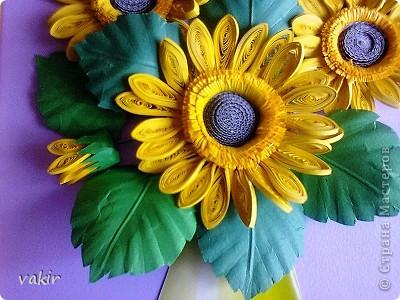 Всем доброго времени суток! Сегодня у меня расцвели подсолнухи! Давно уже облизывалась, любуясь подсолнухами мастериц! Наконец, вырастила и свои в подарок родственнице, замечательному светлоу человеку, которая тоже очень любит эти солнечные цветы. Сразу же приношу извинения за некоторые не очень качественные фото, выполненные с помощью мобильного, на них искажены цвета. фото 4