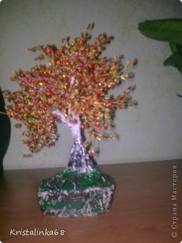 Яблоня и березки фото 2