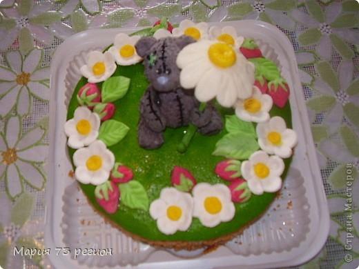 мои торты фото 13