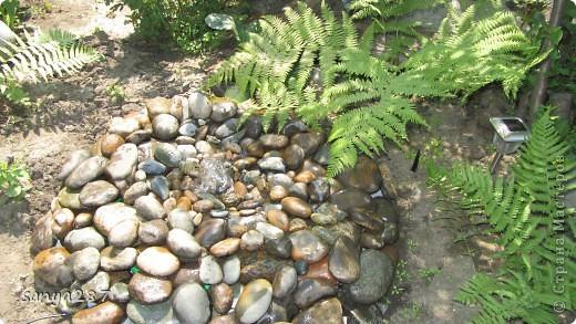 Этим летом нам захотелось, чтобы в саду появился небольшой водоем. Места для реализации идеи было немного, поэтому придумали вместо фонтана и прудика соорудить родничок, похожий на природный. Технология оказалась простой и не затратной, идею подсмотрели в интернете. Материалы: пластмассовый таз, насос для аквариума, различные камни. фото 4