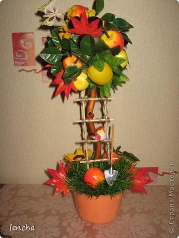 И вновь, здравствуйте, мои дорогие жители СМ!!!!!!!! У меня сегодня ещё один фруктовый топиарчик. фото 1