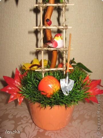 И вновь, здравствуйте, мои дорогие жители СМ!!!!!!!! У меня сегодня ещё один фруктовый топиарчик. фото 3