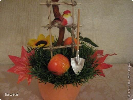 И вновь, здравствуйте, мои дорогие жители СМ!!!!!!!! У меня сегодня ещё один фруктовый топиарчик. фото 5