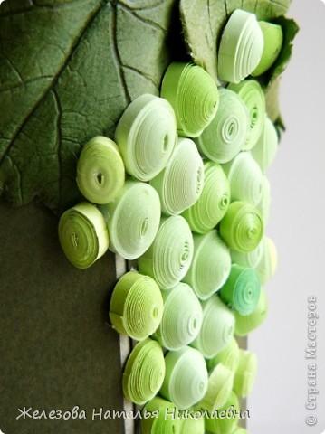 Комплект с зеленым виноградом фото 3