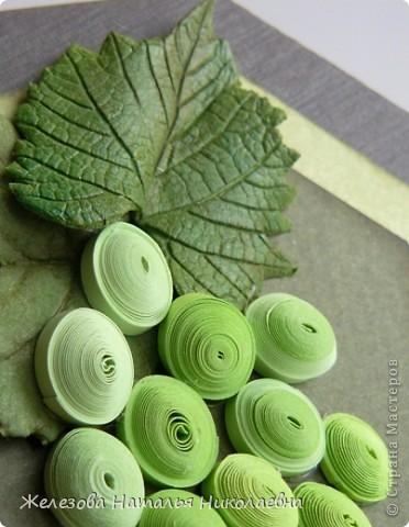 Комплект с зеленым виноградом фото 6