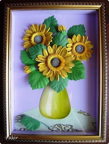 Всем доброго времени суток! Сегодня у меня расцвели подсолнухи! Давно уже облизывалась, любуясь подсолнухами мастериц! Наконец, вырастила и свои в подарок родственнице, замечательному светлоу человеку, которая тоже очень любит эти солнечные цветы. Сразу же приношу извинения за некоторые не очень качественные фото, выполненные с помощью мобильного, на них искажены цвета. фото 12